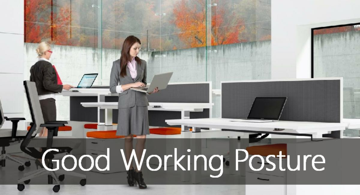 Good Working Posture including ergonomic desking, seating and accessories.
