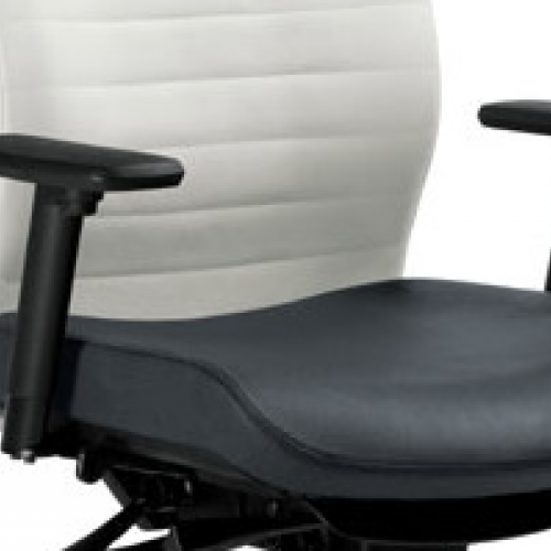 Excutive - Office Seating - ES09